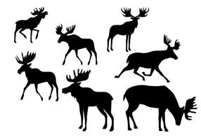 Silhouette Caribou Set vector