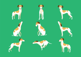 Whippet Cartoon Vector