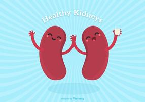 Vector Cute Cartoon Healthy Human Kidney Characters