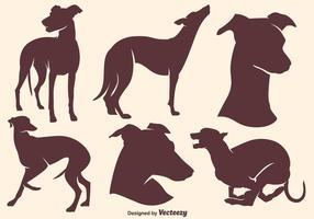 Siluetas de alta calidad de los perros de Whippet del vector