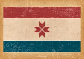 Grunge Vlag van Mordovia