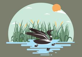 Free Loon Illustration