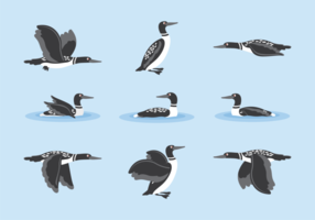 Loon cartoon vector
