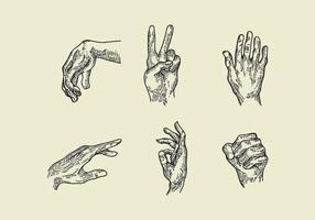 Vectores de la huecograbado de la mano