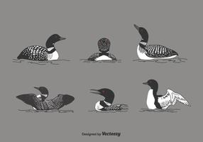 Loon Vector Set