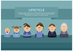 Free Female Lifecycle Vector