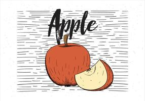 Gratis Vector Hand Drawn Apple Illustration