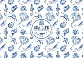Hand Drawn Etched Sea Life Seamless Pattern vector