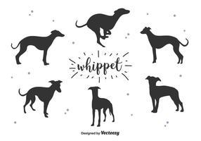 Whippet Vector Silueta
