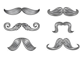 Vetores de bigode de gravura