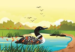 Loon simning i sjön vektor bakgrunds illustration
