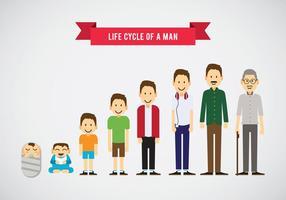 Ciclo de vida de un hombre Vector