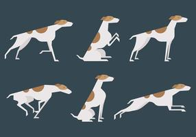 Whippet Vector Iconos