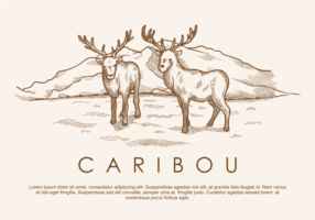 Vrije Hand Drawn Deer Caribou Vectors