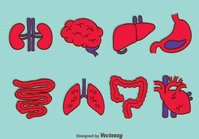 Vectores de colección de órganos humanos