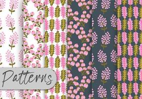 Conjunto de padrões florais macios