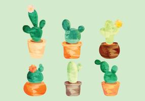 Vector Watercolor Cacti Set