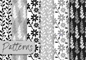 Black and White Floral Pattern Set