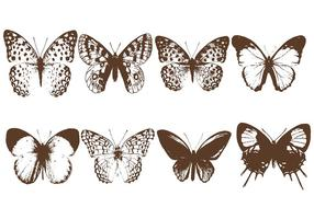 Butterfly Lithograph Vector