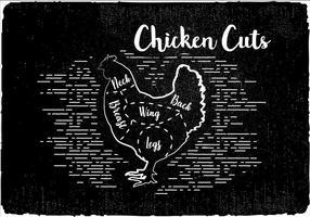 Sfondo vettoriale di tagli di pollo gratis
