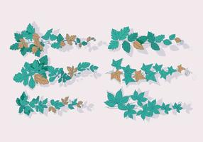 Vector de la propagación de la hiedra venenosa