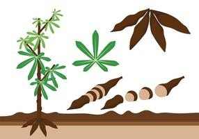 Cassava Icon Vector