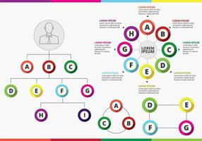 Colorful Org Chart Vector