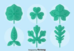 Flache Ivy Blatt Sammlung Vektor