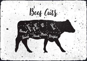 Beef Cuts Vector Background