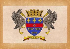 Drapeau grunge de saint barthélemy