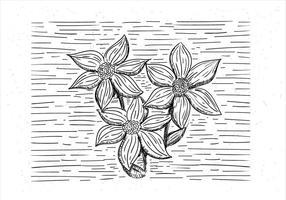 Mano libre dibujada flor del vector