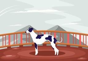 Whippet Male Dog Vector