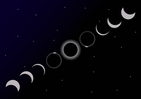 Solar Eclipse Cycle Vector