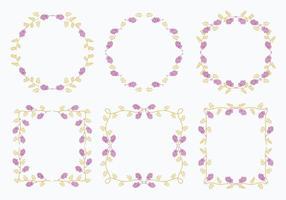 Vecteur d'éléments de modèle de cadre de fleur de réglisse