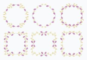 Vetores de elemento de modelo de molho de flor de alcaçuz
