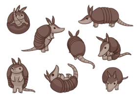Armadillo Cartoon Vectors