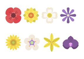 Vectores florales planos
