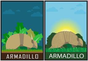 Armadillo Vector Scenes