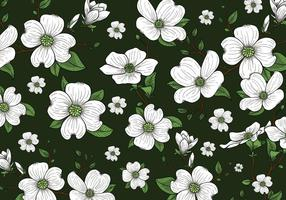 Dogwood Flowers Background Wallpaper vector