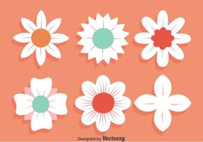 White Flowers Collection On Pink Vector