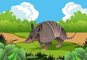 Funny Armadillo in Nature Vector