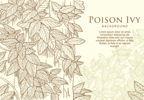 Free Hand Drawn Poison Ivy Leaf vector