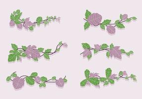 Vert et violet Poison Ivy Vine Vector Illustration