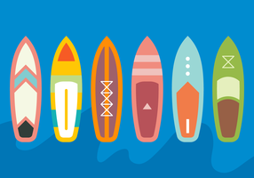 Medium Paddle Board Vector