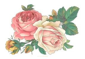 Vintage Watercolor Flowers