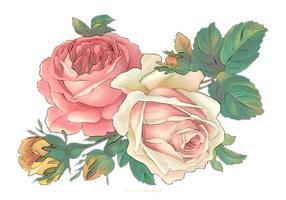Flores de la acuarela del vintage