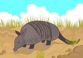 Armadillo Looking for Food Vector