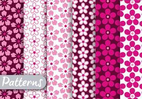 Conjunto de padrões florais cor-de-rosa