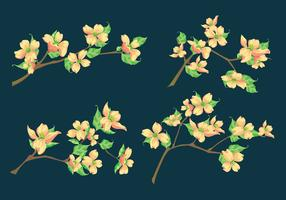 Dogwood Vectors on a Blue Flat Background
