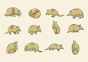 Iconos Del Armadillo Vector